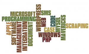 software-wordle